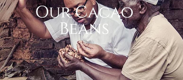 Single origin cacao beans chocolate in Hong Kong